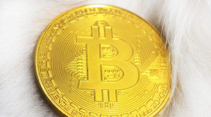 Bitcoin Kembali Pecahkan Rekor picture