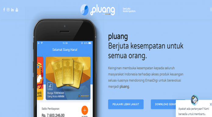 pluang picture