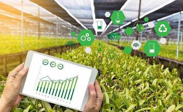 blockchain pertanian perikanan
