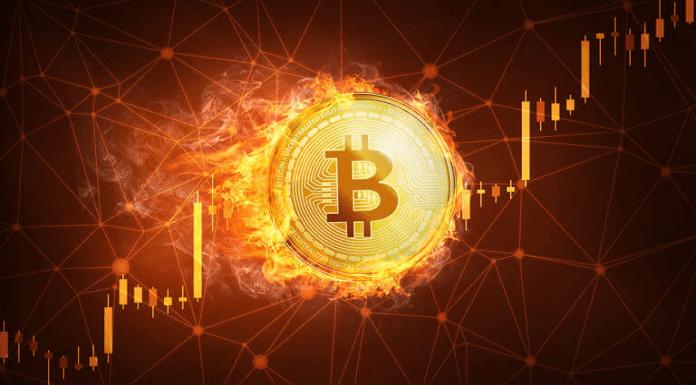 Tempat Trading Bitcoin Terbaik