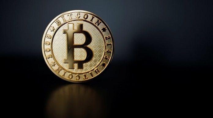 manajer investasi Bitcoin